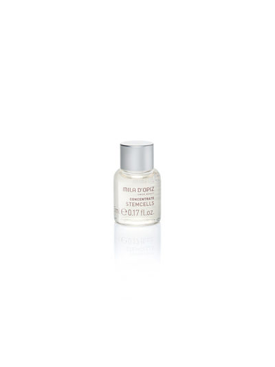 Concentrate Collection Stem Cell