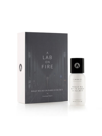A Lab On Fire What We Do In Paris Is Secret